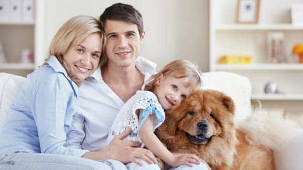 Wills & Trusts dog-young-family Direct Wills West Kensington